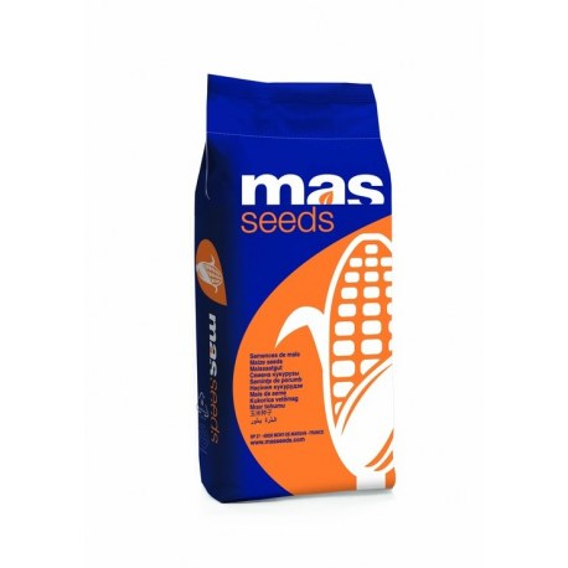 Гібрид кукурудзи Mas 24.С + ForceZea
