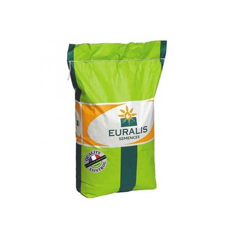 Гібрид кукурудзи ЕС ЯКАРІ (ES YAKKARI)