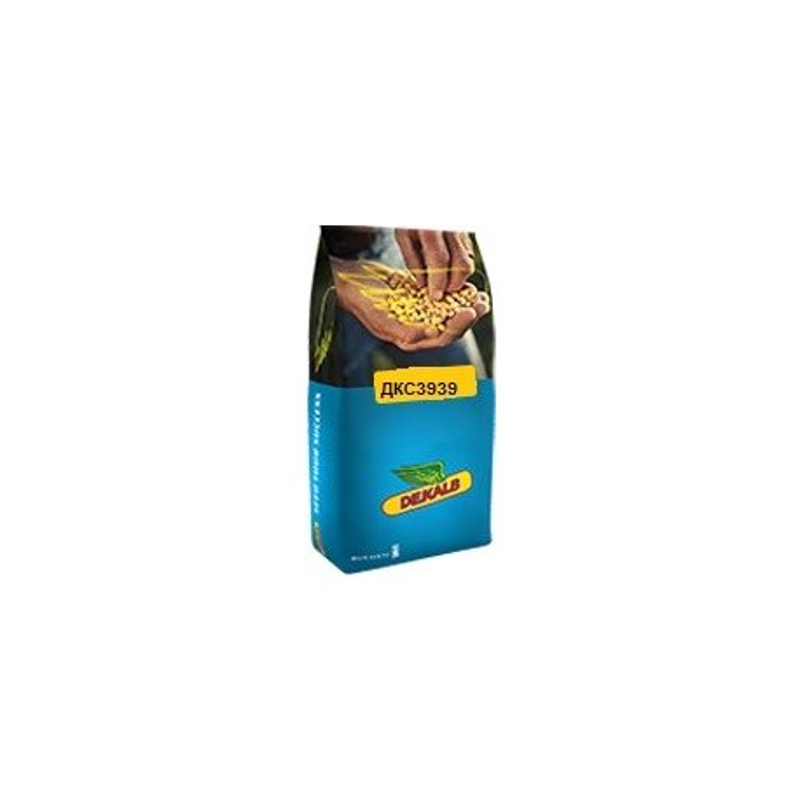 Гібрид кукурудзи (DKC3939)