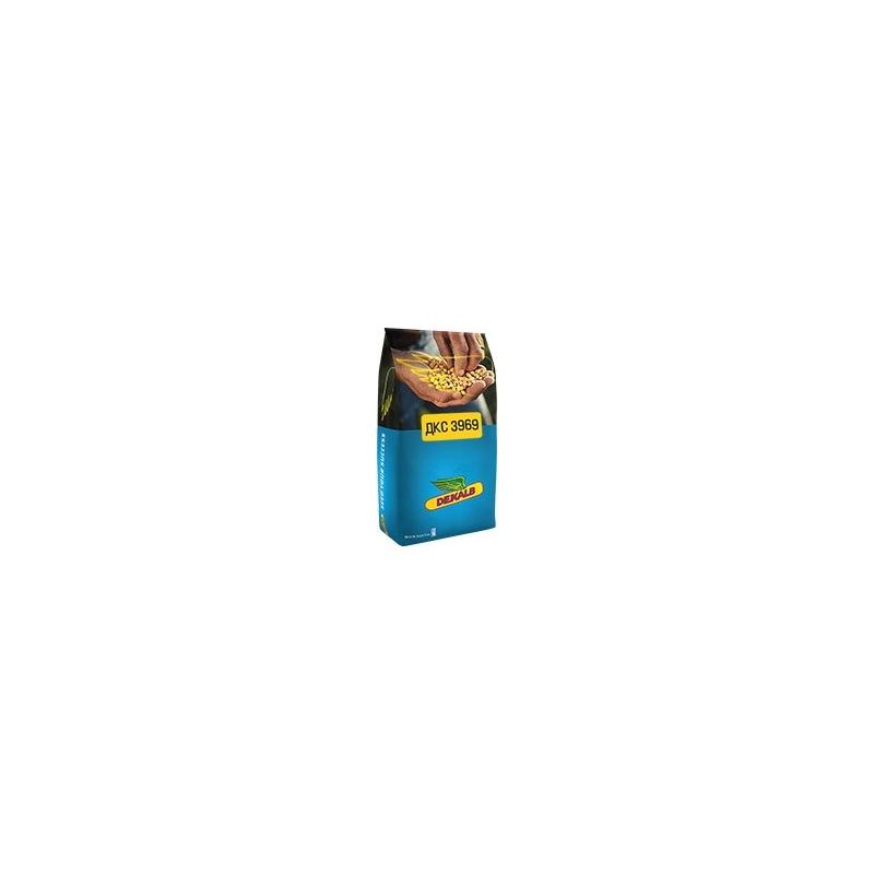Гібрид кукурудзи ДКС3969 (DKC3972)