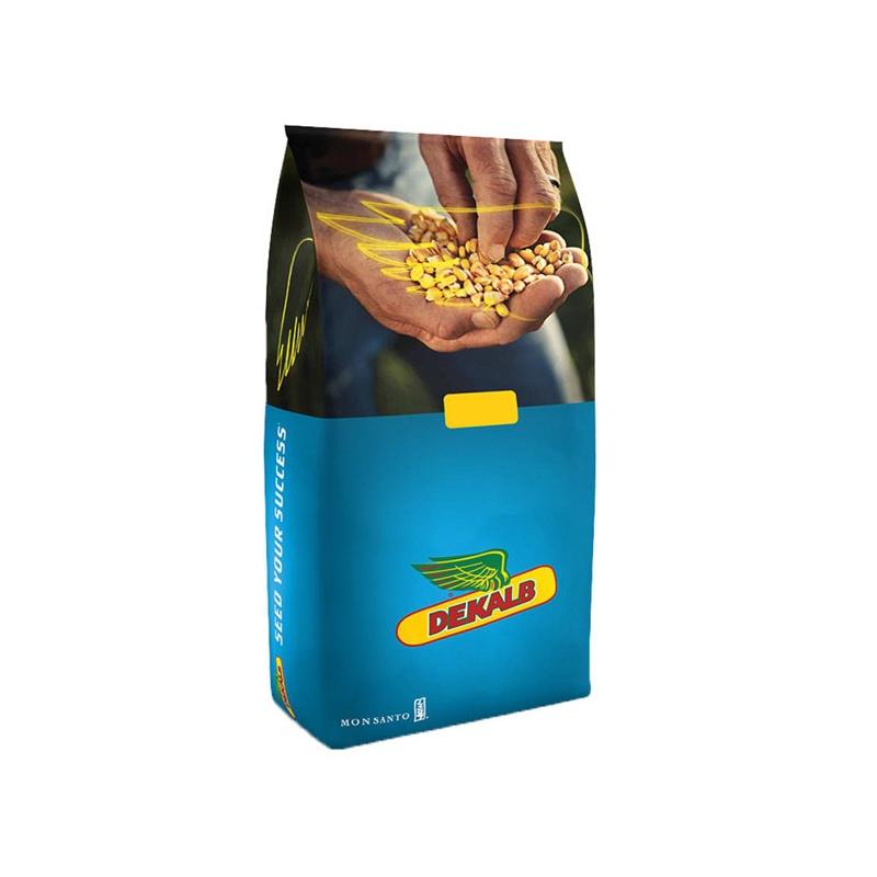 Гібрид кукурудзи ДКС4590 (DKC4590)