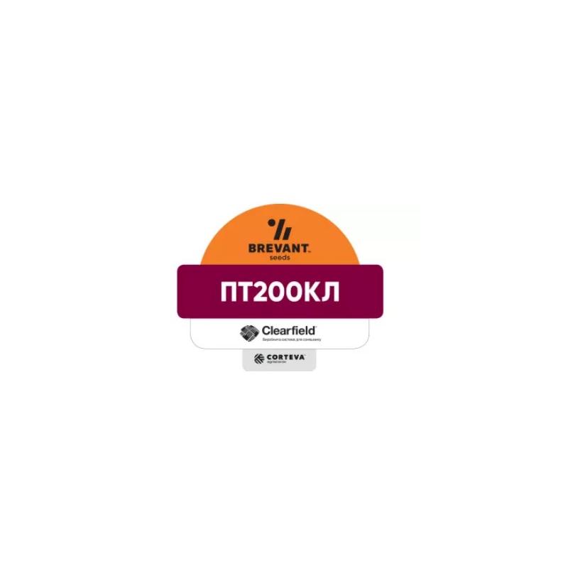 Гібрид ріпаку PT200CL