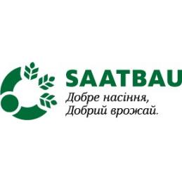 Гібрид ріпаку Астана